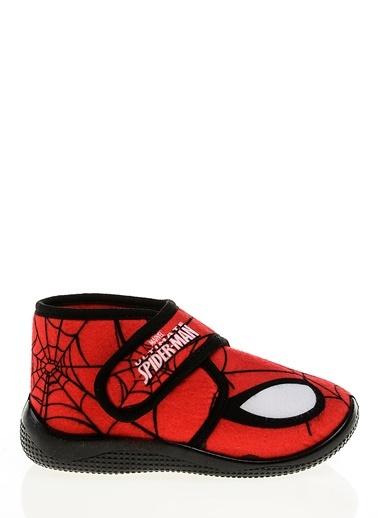 Panduf-Spiderman